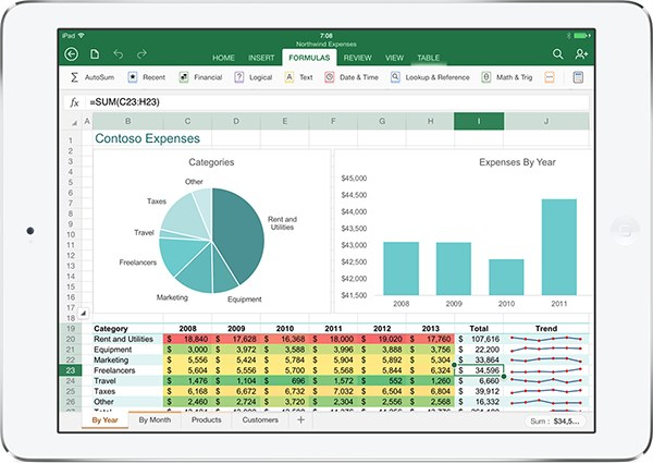 Office iPad excel
